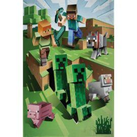 Minecraft polár takaró